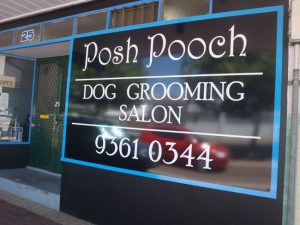 Dog Wash Near Me, Dog Wash Perth